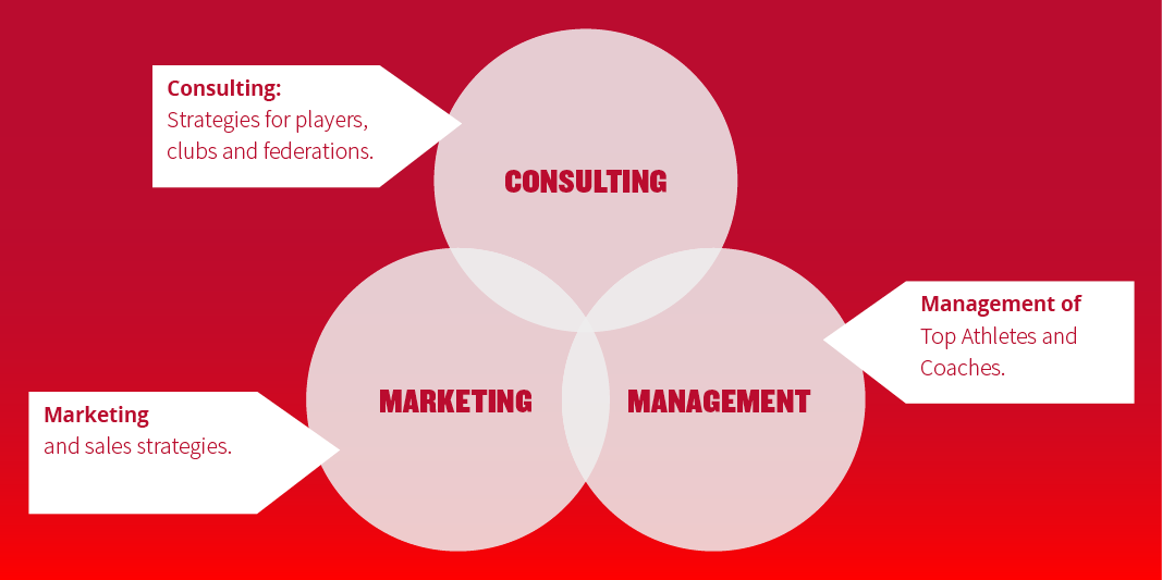 SPOCS Consulting